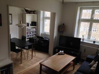 Nice Copenhagen apartment at the multiethnic Noerrebro