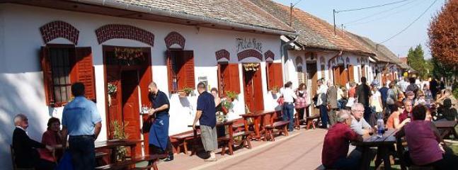 Famous winevillage Villány within easy biking distance