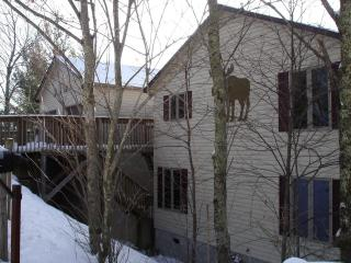 Moose Manor, Game Room, 2 Living Rooms, Wifi, Beech Mountain