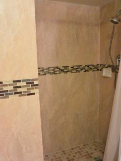 Over-sized spa shower with detachable shower head