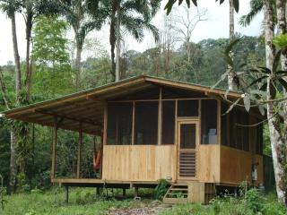 Howler Monkey Cabin next to the Jungle! A cool mountain retreat above Dominical!