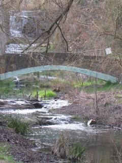 Old stone bridge crosses Wombat Creek just below the lake, site of bygone gold diggings.