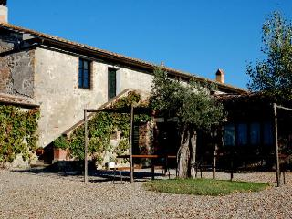 Blue House - Apartament with swimming pool in Val d'Orcia, Castiglione D'Orcia