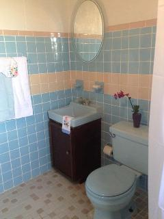 shower/bathroom