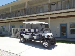 A Wave From It All 4 bedroom, 3 bath, pet 25 lbs,*Free golf cart, sleeps 12, Port Aransas