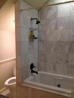 Master shower/tub combination 1st floor