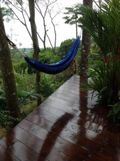 Enjoy a lazy day in your hammock listening to Howler Monkeys and Toucans!