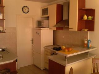 Apartment penthouse Ivan