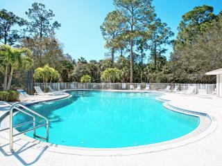 Naples - Briarwood / Designer South Pool Home