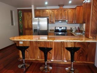 Arenal Maleku Luxury Condo 12-2-1-1, Naranjos Agrios