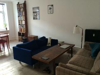 Bright Copenhagen apartment at the nice Vesterbro area