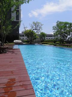 The infinity salt water swimming pool