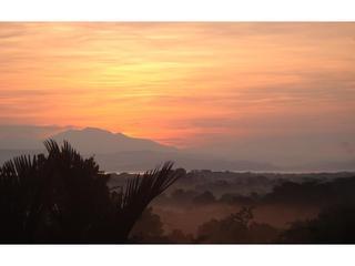 Ocean Views - Golfo Dulce - vogels