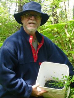 Brent picking blueberries