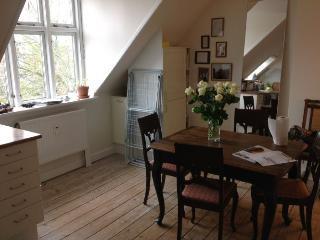 Nice Copenhagen apartment near Frederiksberg Alle