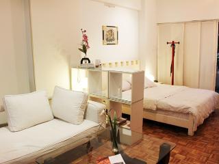 Homely Studio in Posadas and Callao Ave - Recoleta (235RE), Buenos Aires