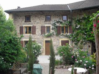 Fab Farmhouse with grand piano- Haut Beaujolais/Burgundy border, Saint-Igny-de-Vers
