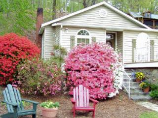 VALUE & LOCATION - Pet Friendly Evergreen Cottage, Lake Lure