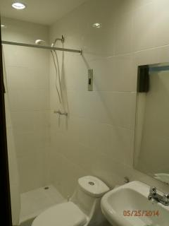 Ensuite bathroom with Shower and hand-held shower head.