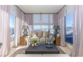 Alameda Suite
