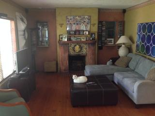 Living room, Chloe the cat.