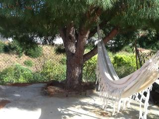 Quinta do Kindred Spirit , peace and privacy, Faro District