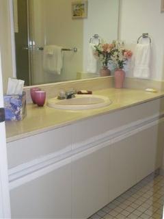 Master bath- tub/shower