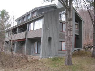 Remodeled Clearbrook Townhome with Mtn. View
