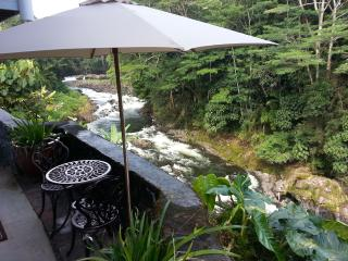Reed's Island -Incredible Location -Yet Affordable, Hilo