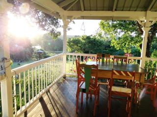 The north facing view from the verandah of the orchard and Tallebudgera Creek