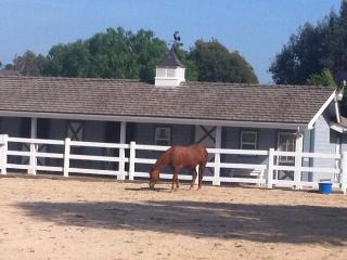 Equestrian community close to Disney