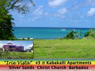 "Barbados Oceanview Apartment ""Irie Vista"", Silver Sands"