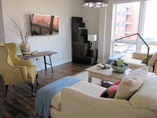 Downtown 2 Bedroom Condo, Charlottesville