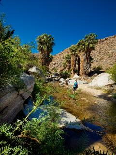 Hike Indian Canyons!