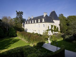 Chateau in the Loire Valley for Rent - Chateau de Valerie, Beaumont-en-Veron