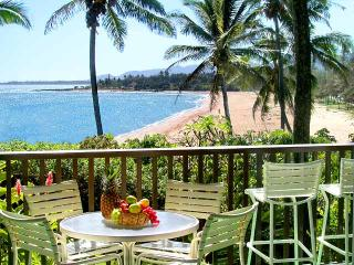 Wailua Bay 1 Bedroom  Ocean Front 103
