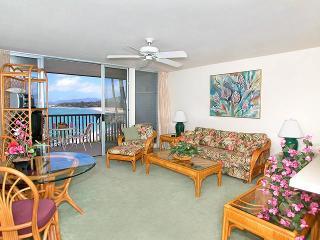 Wailua Bay View 1 Bedroom Ocean Front 215