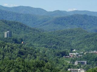 What A View, Gatlinburg