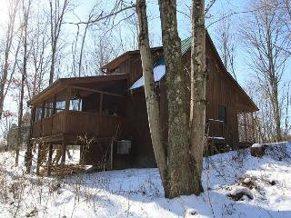 Great Cabin With Outdoor Firepit, Logan