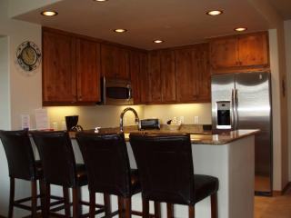 Gourmet Kitchen-Stainless Steel Appliances-Granite Counters-Leather Bar Stools