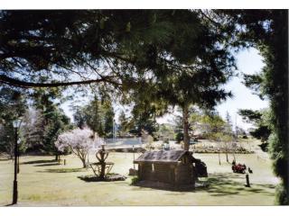 Mt Victoria park