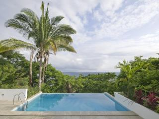 Modern 2 Story Loft with 360 Degree Views of Ocean & Jungle + Infinity Pool!