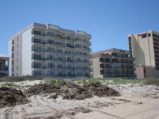 FLORENCE I 203, South Padre Island