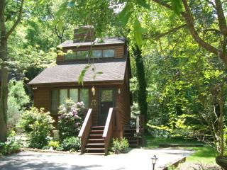 Romantic JOY CHALET for 2: King/Hot Tub/FP/Massage Chair/Central AC/Dog Friendly