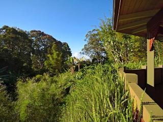 Views of Eucalyptus forests and Hawaiian plants from the covered Lanai of Aloha Cottage.