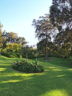 Rolling lawns, fragrant Hawaiian foliage and the majestic forests of Eucalyptus.