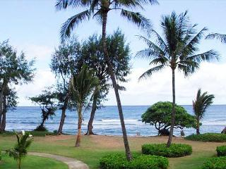 Affordable beachfront luxury in this charming studio with a/c and ocean view., Kapaa