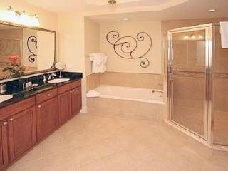 Luxurious Master Bath with a Jacuzzi tub and walk-in shower