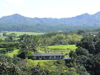 North Shore home with Waterfall Views, Kilauea