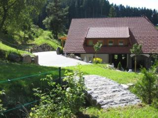 LLAG Luxury Vacation Apartment in Triberg im Schwarzwald - 754 sqft, comfortable, nice furnishings (#…